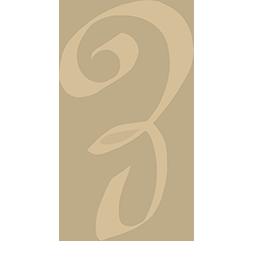 Shadowhunter Runen